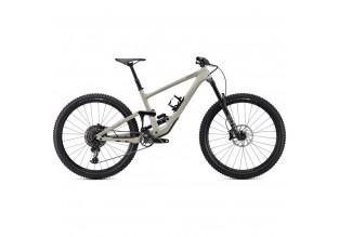 2020 Specialized Enduro Elite Mountain Bike